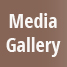 Explore the International Writing Program's Media Gallery