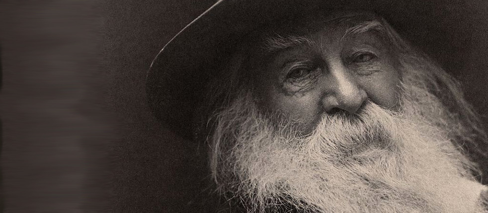 Walt Whitman Song of Myself