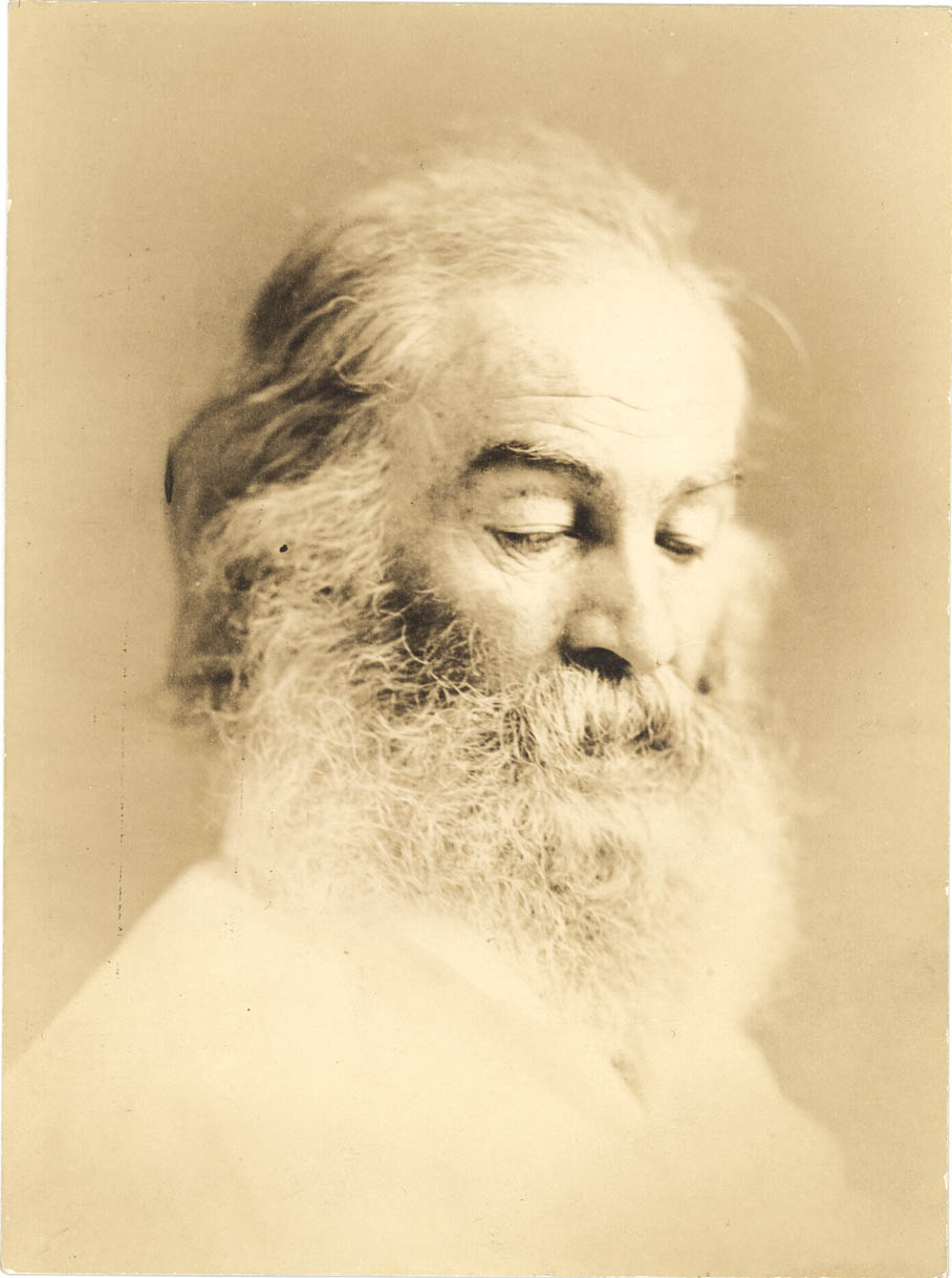 section 16 iwp whitmanweb a whitman portrait