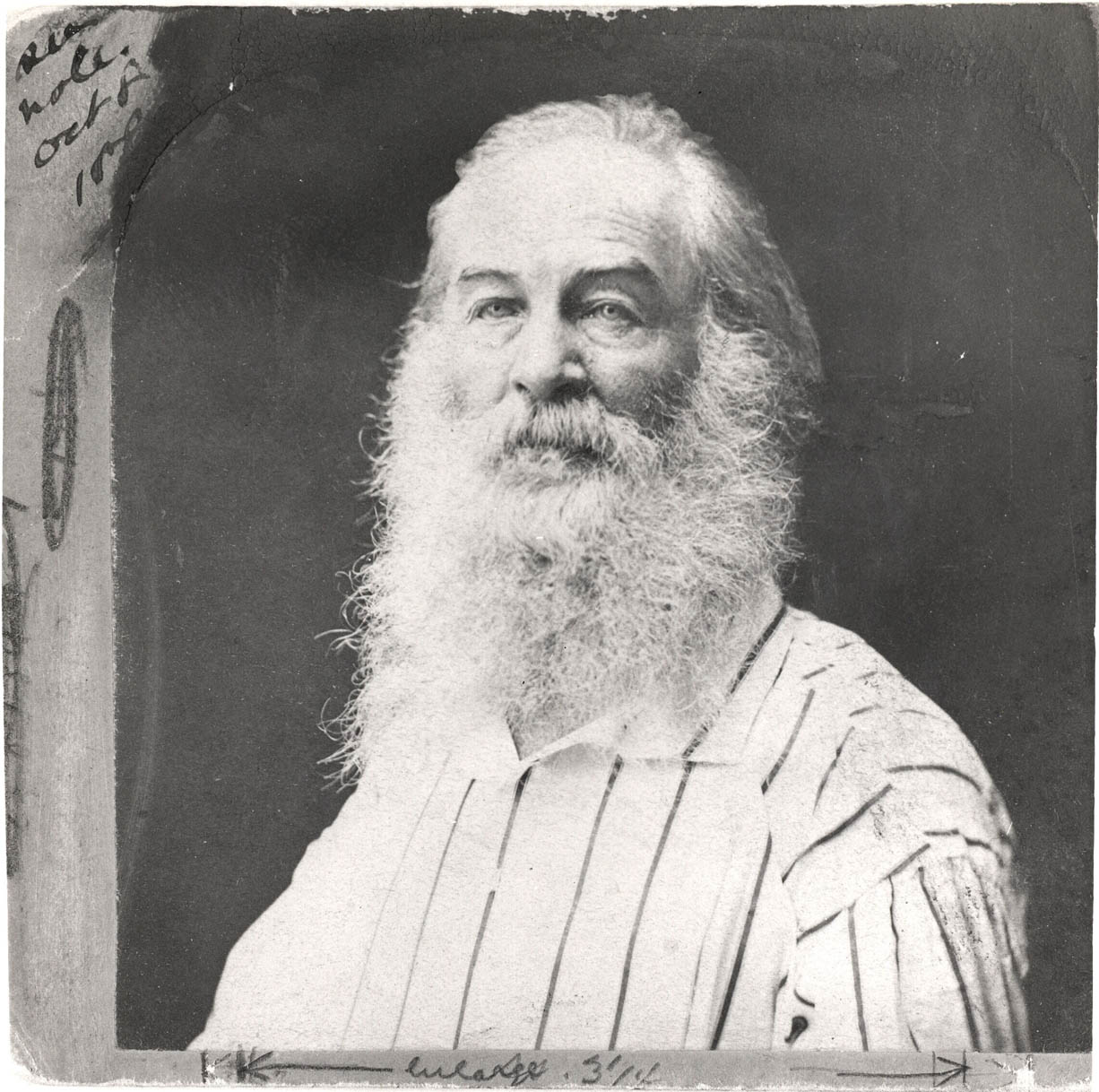 Whitman in a striped shirt. (Photo F. Pearsall, mid-1870s.)