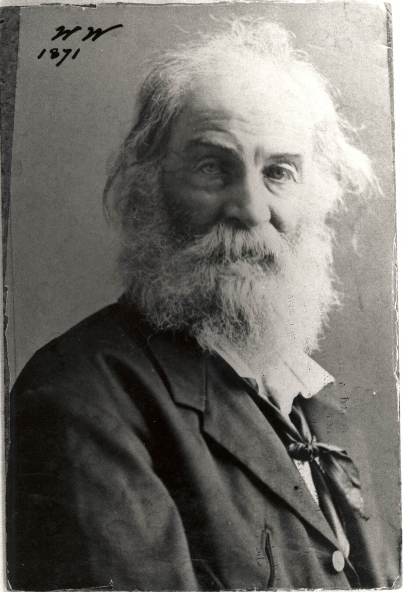 Whitman: the mournful gaze.  (Photo V. W. Horton, 1871)