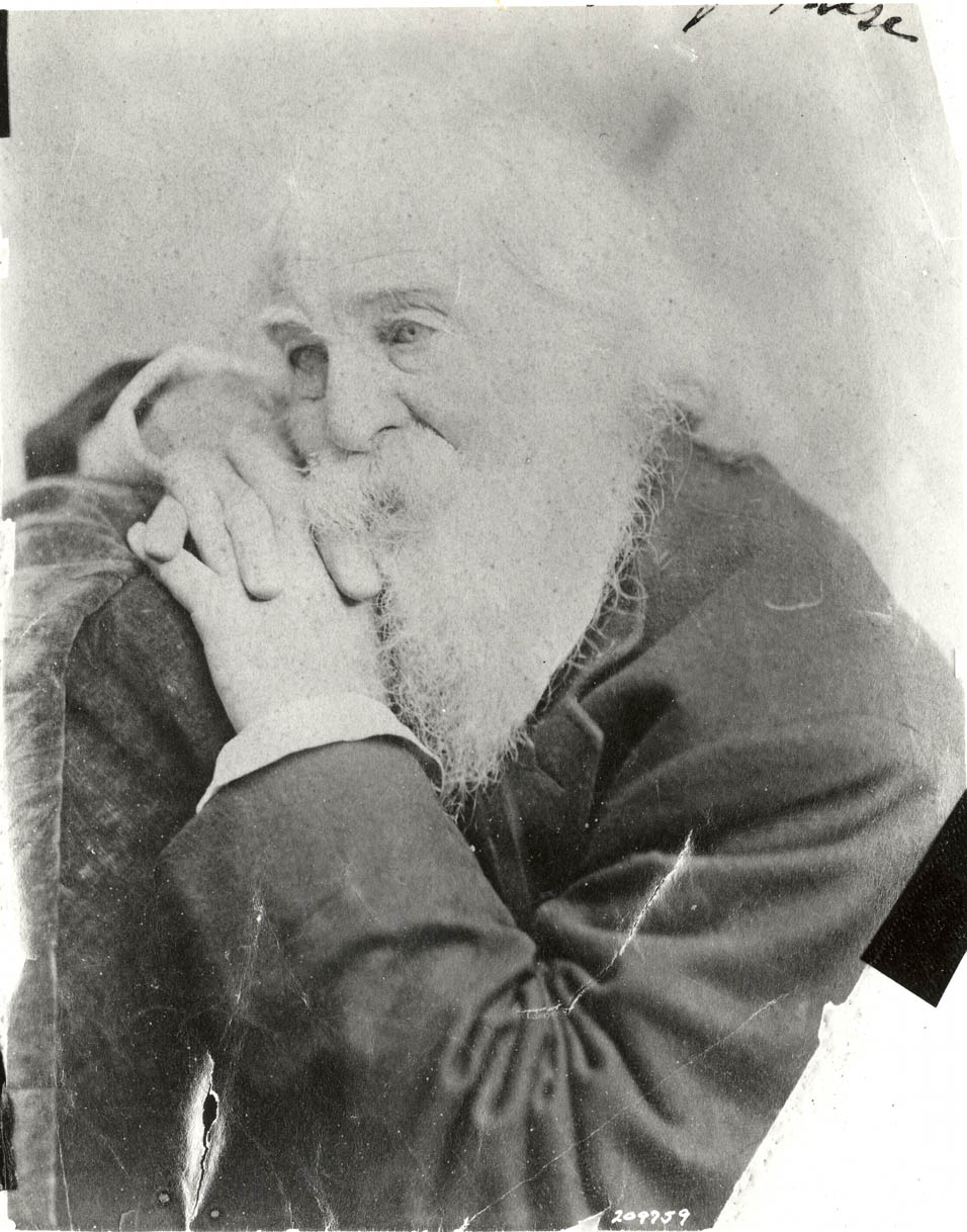 Whitman, 1880s. Photographer unknown.