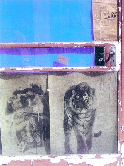 Tiger Gate; photo by Katherina Attalides