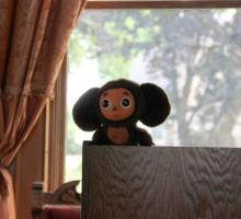 The official BTL Russia mascot: Cheburashka.
